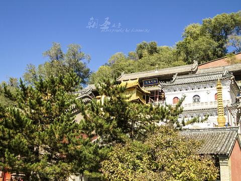 显通寺旅游景点图片