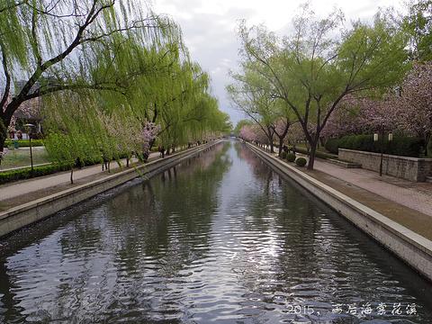元大都城垣遗址公园