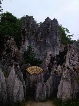 华蓥山旅游区旅游景点攻略图