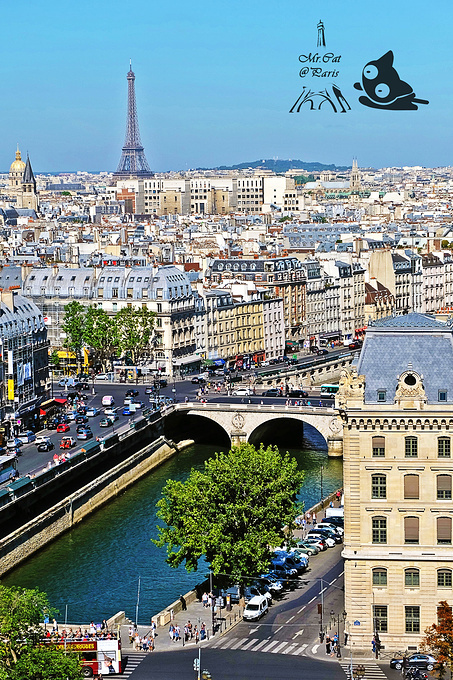 Towers of Notre-Dame Cathedral图片
