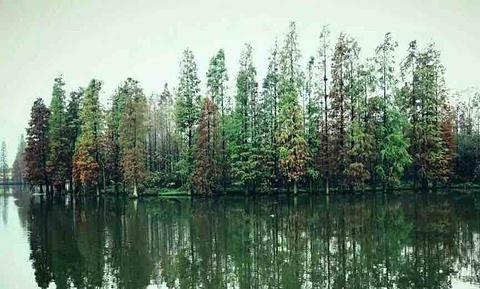 千湖旅游景点攻略图