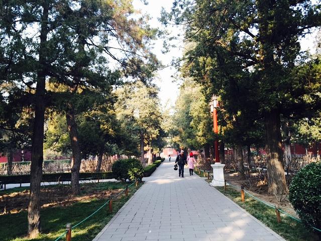 """""""但是个人觉得最佳的游览时间是秋季[10月份左右]秋意盎然,满山的秋叶加上秋风四溢,很美。游玩时间1_景山公园""""的评论图片"""
