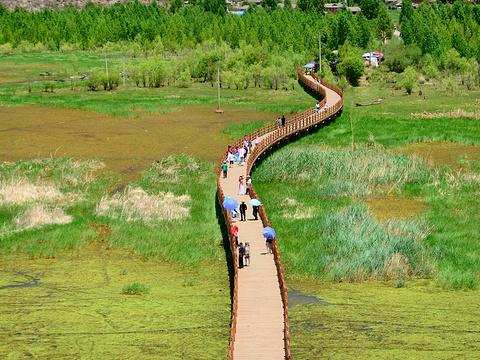 走婚桥旅游景点图片