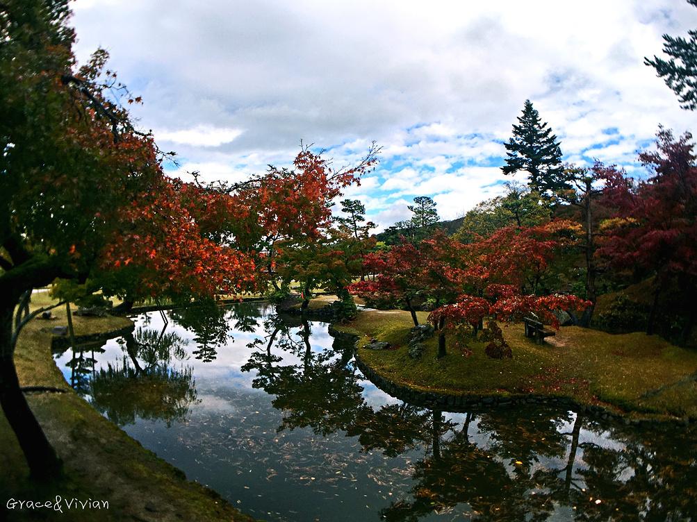 层林尽染访古今——日本关西赏枫之旅