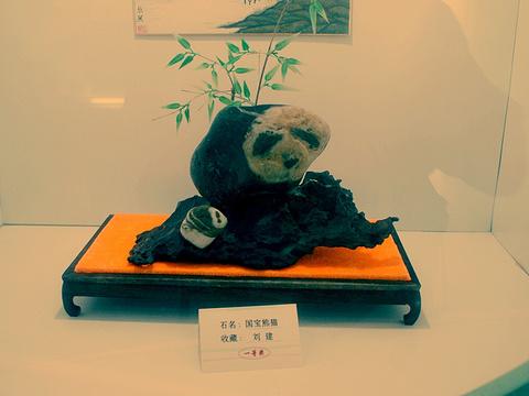雨花石博物馆旅游景点图片