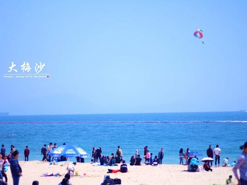 大梅沙海滨公园旅游景点图片