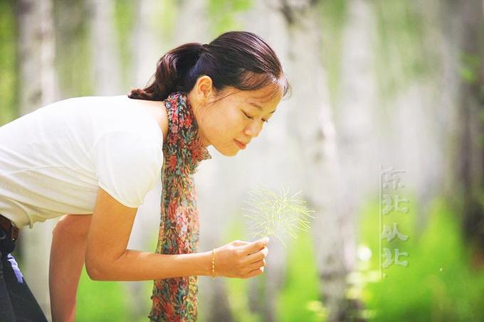 白桦林里的姑娘,都漂亮!图片