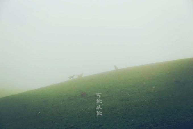 D.6 临江——恩和图片