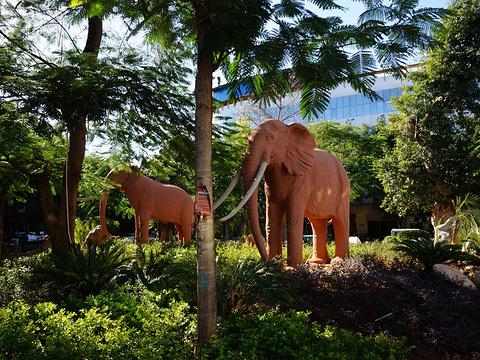 元谋猿人博物馆旅游景点图片