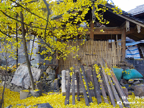 银杏村旅游景点图片