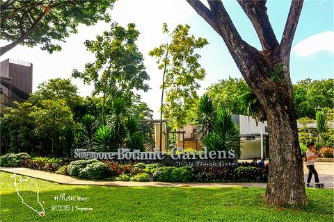 新加坡植物园旅游景点攻略图
