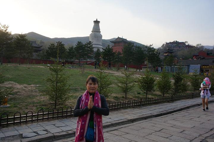 五台山与尼泊尔蓝毗尼花园、印度鹿野苑、菩提