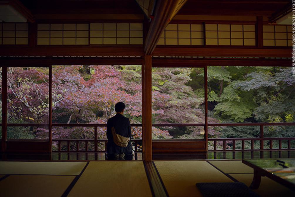 日本行之神户京都