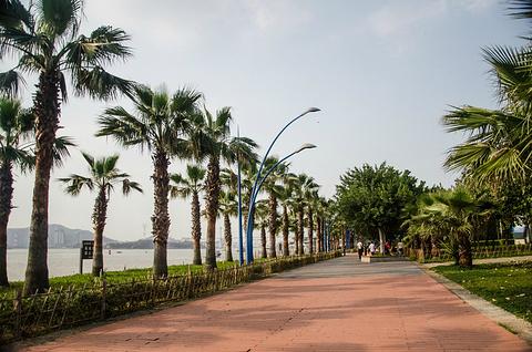 海湾公园旅游景点攻略图