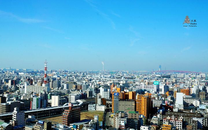 """""""通天阁是个非常适合和大阪say morning的地方,一来登高望远,大阪的风光尽收眼底_通天阁""""的评论图片"""