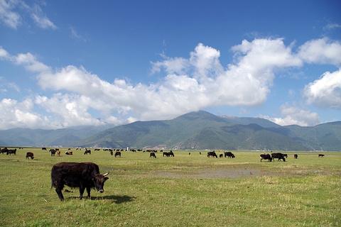 纳帕海旅游景点攻略图