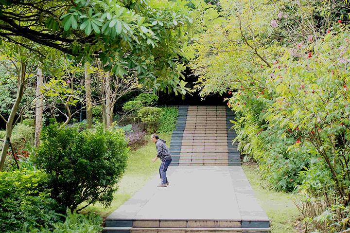 """""""公园的配套设施还挺齐全,健步道路修建的很好,而且都是穿行于绿茵花草之中,空气非常好,负离子充足_马鞍山森林公园""""的评论图片"""