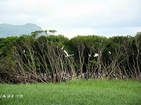 海门岛旅游景点图片