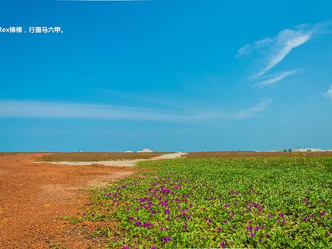 吉里望海滩旅游景点图片