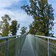 西海岸树梢漫步 West Coast Treetop Walk