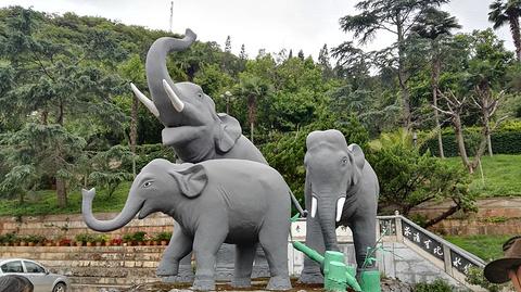 象鼻温泉旅游景点攻略图