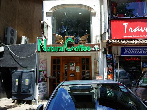 自然咖啡馆旅游景点图片