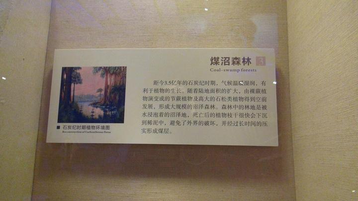 """""""参观时间:我喜欢文物,所以建议留有至少半天的时间。现在说说博物馆,凭身份证领票,免费参观_广东省博物馆""""的评论图片"""
