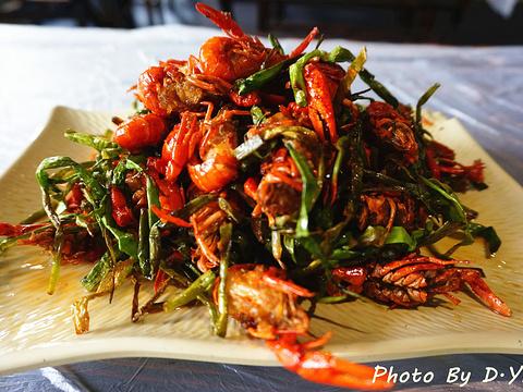 巴厘龙虾旅游景点图片