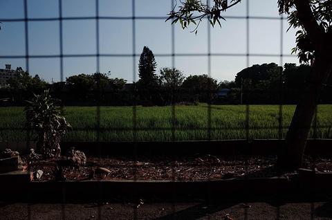 清水眷村旅游景点攻略图