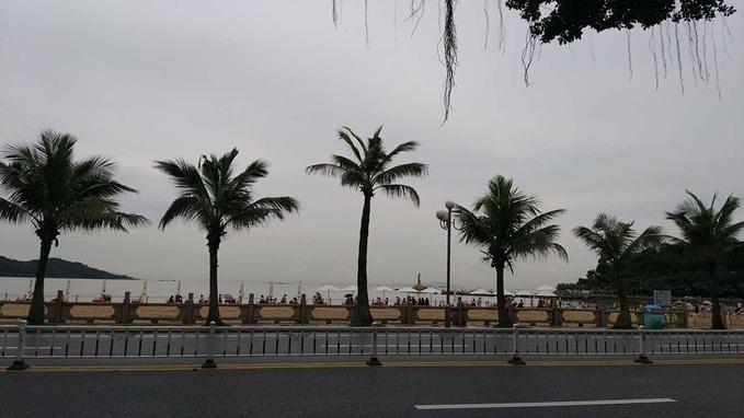 珠海渔女、海滨公园图片