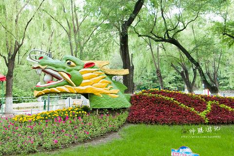 兆麟公园的图片