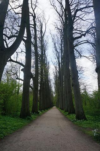 """""""当然,还有奥伊廷城堡和这里的花园。这个紧邻吕贝克的北欧小镇是小镇之旅不可错过的景点哦_奥伊廷城堡""""的评论图片"""