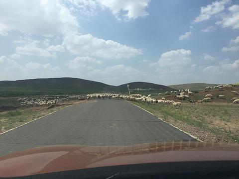 格根塔拉草原旅游景点攻略图