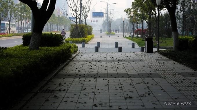 梁溪路街景图片