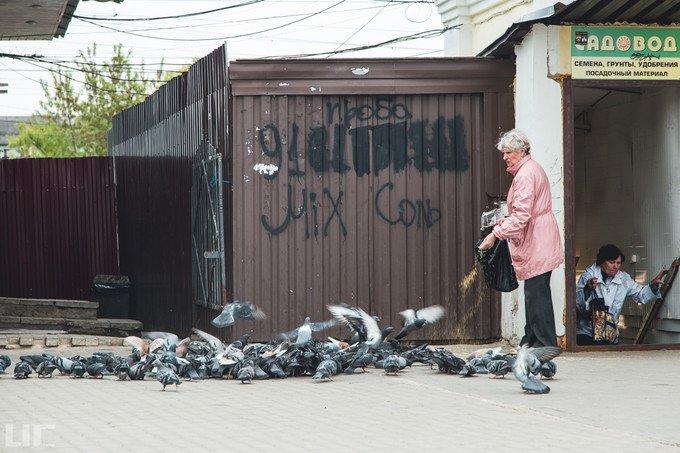 谢尔盖耶夫镇图片