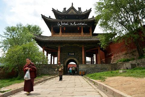 显通寺的图片