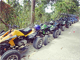 MJ ATV & Bugcar