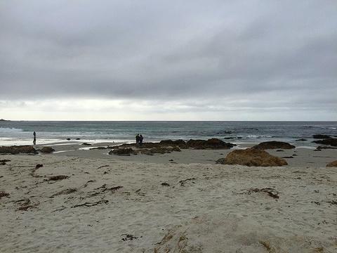 太平洋格罗夫旅游景点图片
