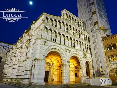 卢卡圣马丁大教堂旅游景点图片