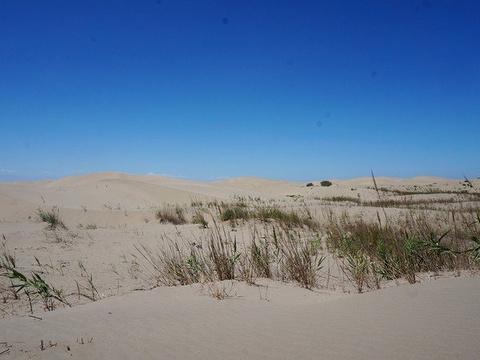 达瓦昆沙漠旅游风景区旅游景点图片