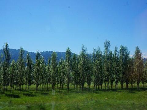 新源县旅游景点图片