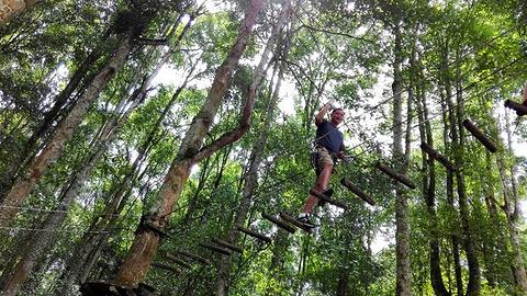巴厘岛树顶公园