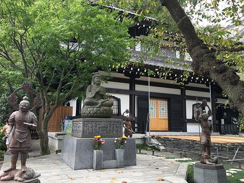 极乐寺的图片