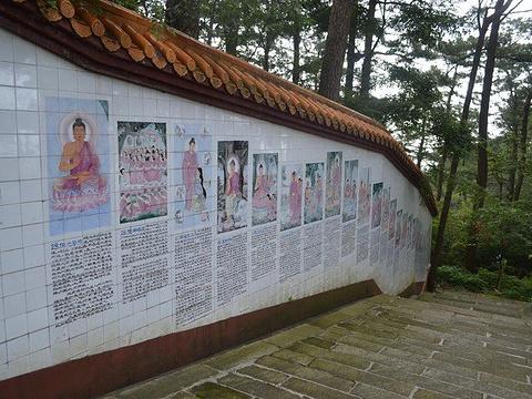 南台寺旅游景点图片