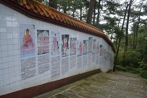 南台寺的图片