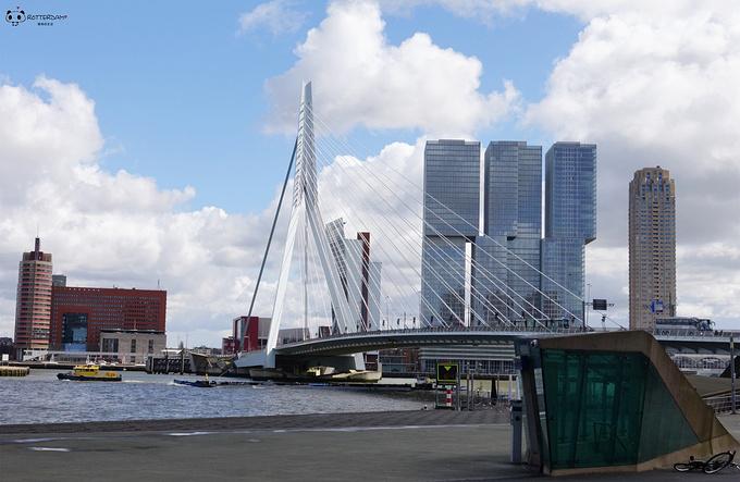 鹿特丹港图片