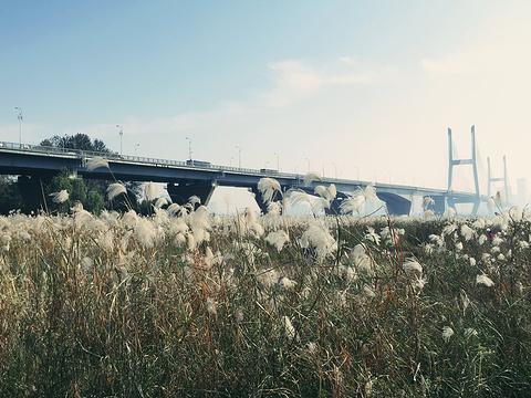 汉口江滩旅游景点图片
