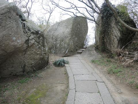 二龟听法石旅游景点攻略图