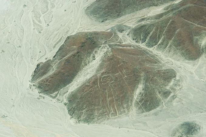 外星人侵略地球的痕迹?——Naska地画图片