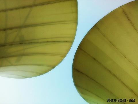 黄河文化公园旅游景点攻略图